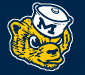 Profile picture for user MichiganSports3