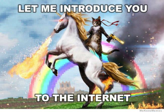 let-me-introduce-you-to-the-internet-meme.jpg