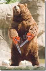 2007-11-29-chainsaw-bear