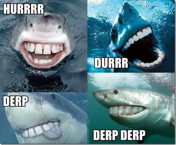shark_derp_durr_hurr