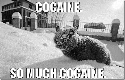 cat_cocaine