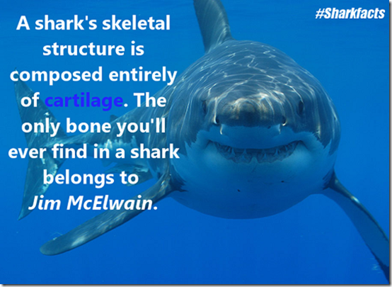 Sharkfacts3