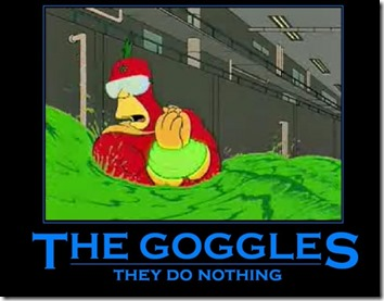 The Goggles