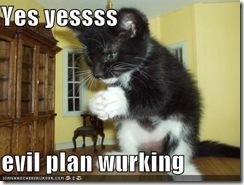 cat-evil-plan