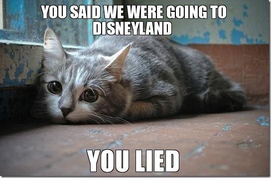 sad-kitty[1]