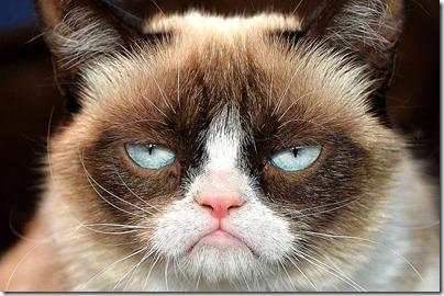 grumpy-cat[1]