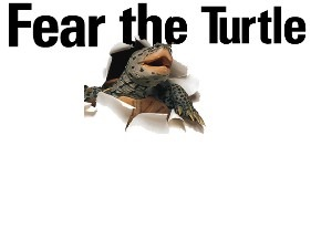 fear_the_turtle[1]