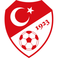 200px-Turkish_Football_Federation_logo[1]