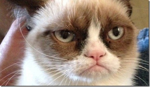 Grumpy-Cat-Tadar-Sauce[1]