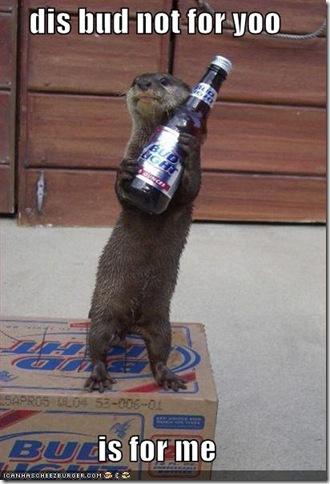 otter-beer
