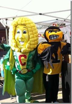 iowa-corn