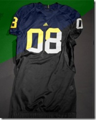 Michigan Jersey 2