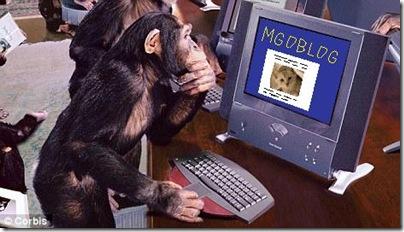 monkey-on-mgoblog